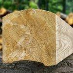 Strugarka Wood-Mizer Mp150